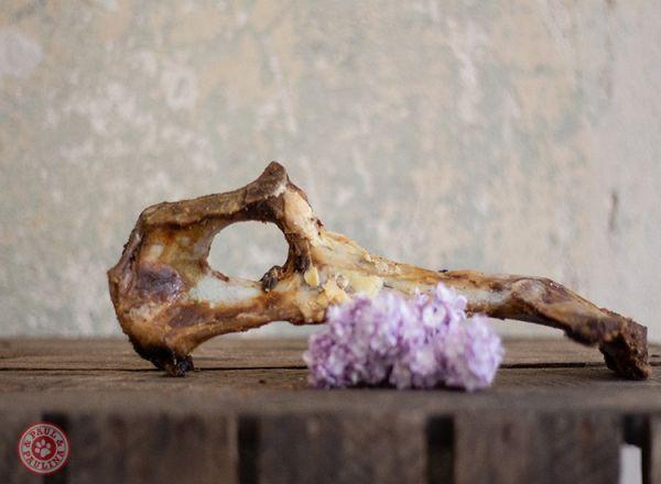 Ziegenschlossknochen luftgetrocknet